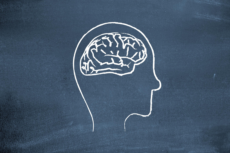 brain training _careco