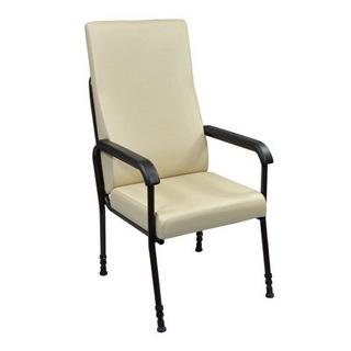 Longfield Lounge High Seat Chair