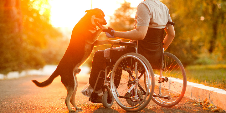 Specialised Wheelchairs and Accessories for Different Lifestyles