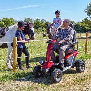 mobility scooter in park with horses
